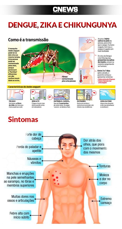 arte dengue